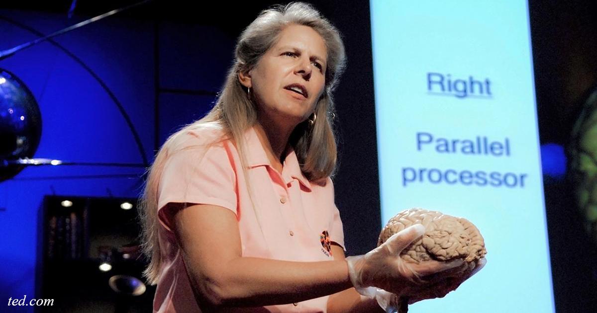 Ich bin ein Neurobiologe aus Harvard. Und erst nach dem Schlaganfall erkannte ich das Hauptgeheimnis des Lebens!
