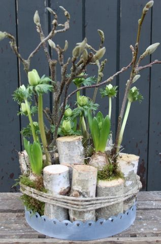 Haben Sie noch irgendwo einen Baumstamm oder eine Holzscheibe herumliegen? 7 Super coole DIY-Ideen mit Holz!