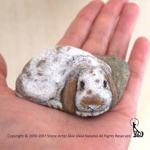 Frau verwandelt Steine in täuschend echte Tiere.