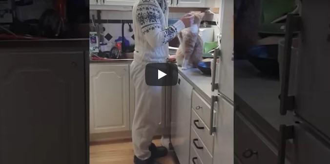 Hat Frederik nicht die süßeste Katze der Welt? Schau das Video an, das bereits 3 Millionen mal gesehen wurde
