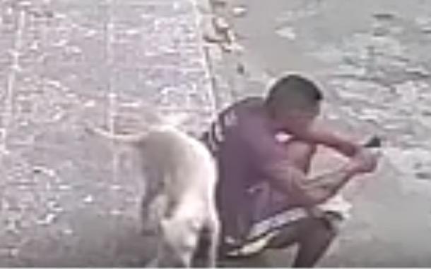 Mann wird von Hund angepinkelt und adoptiert ihn.