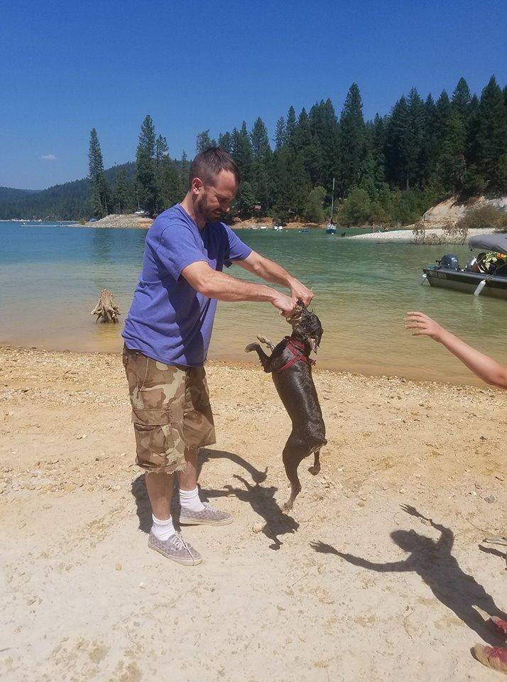 Hund des Pärchens stirbt nach einem normalen Spiel – nun möchten sie alle davor warnen