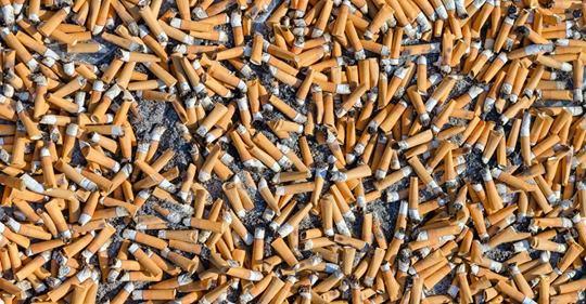 Zigarettenstummel sorgen für den meisten Müll auf der Welt und Freiwillige sammelten in nur ein paar Stunden 270.000 davon auf