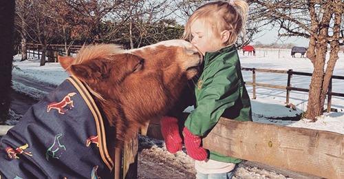 Außergewöhnliche Freundschaft Seit der Geburt: Pony kümmert sich rührend um Mädchen