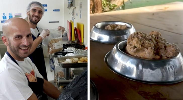 Ein Küchenchef beschließt, das nicht gegessene Essen seiner Kunden an Tiere in örtlichen Tierheimen zu spenden