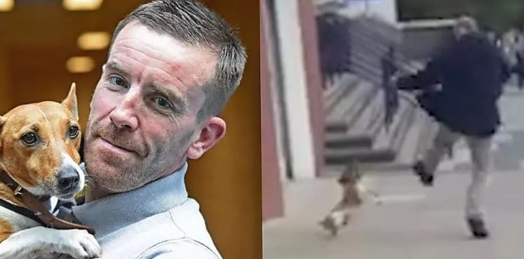 Ladenbesitzer rettet Hund nach Kopf-Tritt von Herrchen.