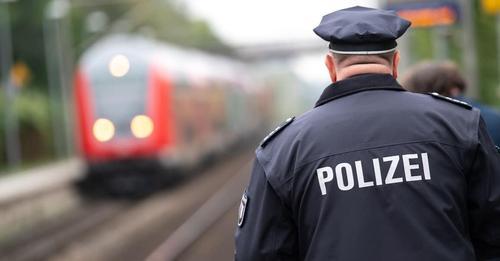 Zugunglück bei BraunschweigMann will seinen Hund von Gleisen retten, doch beide sterben